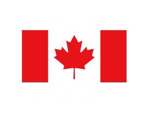加拿大國旗矢量圖
