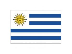 乌拉圭国旗矢量图