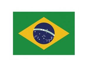 巴西国旗矢量图