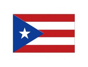 波多黎各旗幟矢量圖