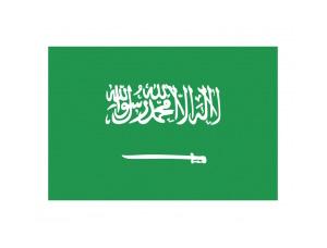 沙特阿拉伯國旗矢量圖