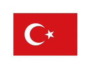 土耳其国旗矢量图
