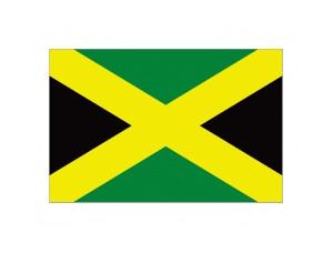 牙買加國旗矢量圖