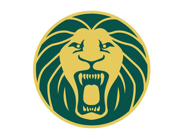 喀麦隆国家足球队队徽标志矢量图
