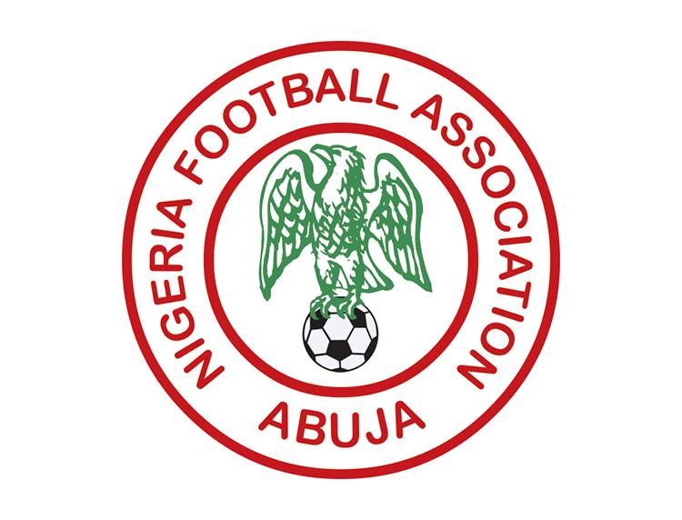 尼日尼亚国家足球队队徽标志矢量图