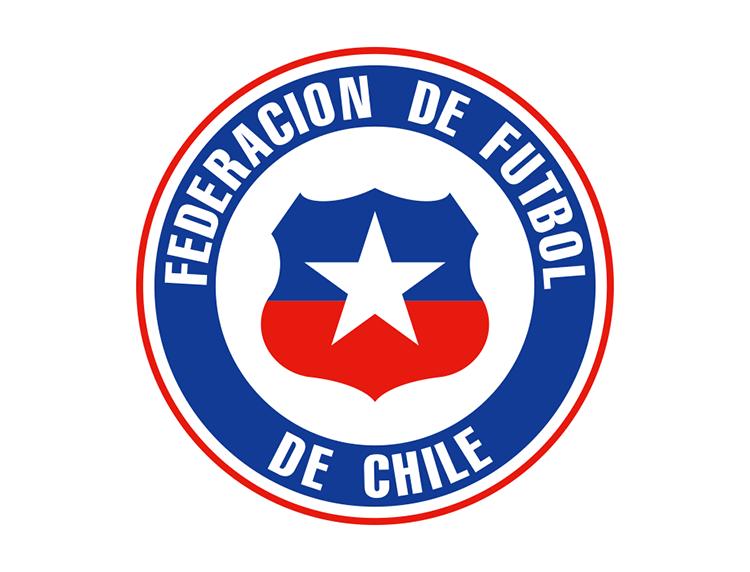阿根廷足球队标志_阿根廷男子国家队队徽-