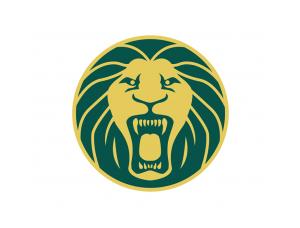 喀麦隆足球队】  喀麦隆 足球队队徽浮雕设计风格 塑料 tpu手机 300图片