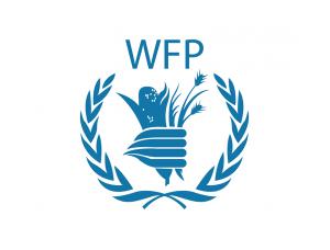 联合国世界粮食计划署logo标志矢量图