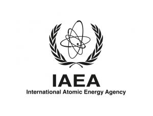 国际原子能机构(IAEA)标志矢量图