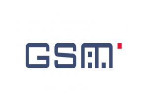GSM矢量標志圖