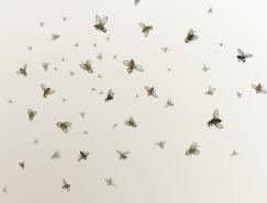苍蝇矢量素材