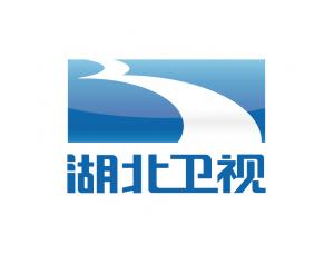 湖北卫视台标logo矢量图
