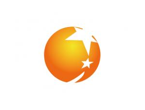 辽宁卫视台标logo矢量图