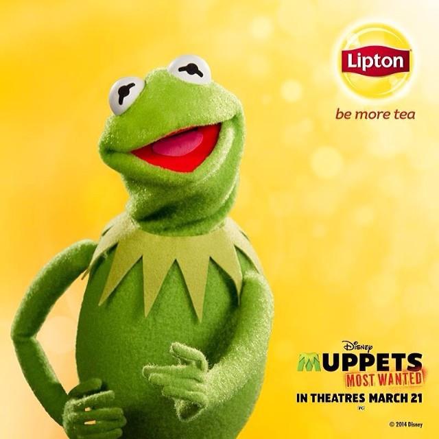 立顿Lipton更换新标识