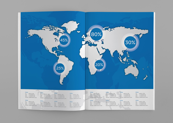 WDSE2013年报画册设计