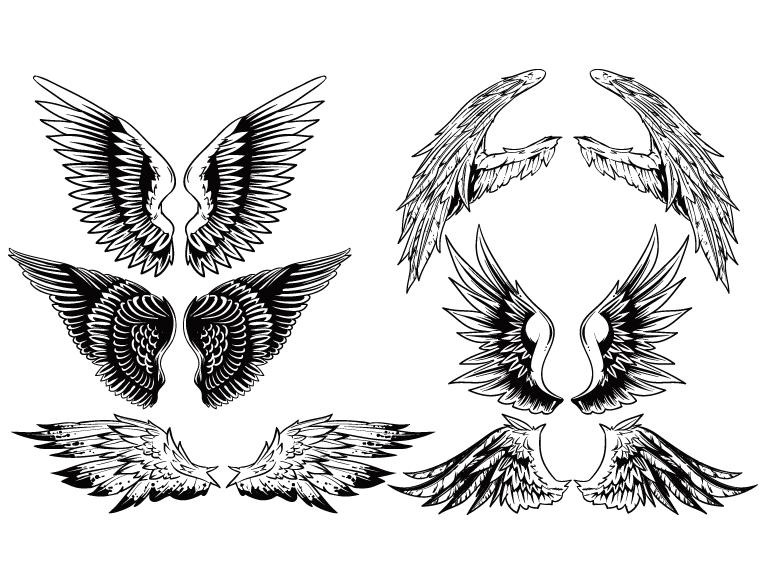 eps格式,翅膀,花纹,手绘,线描,矢量图