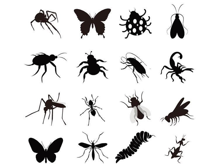 多种昆虫剪影图标矢量素材