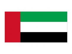 阿聯酋國旗矢量圖