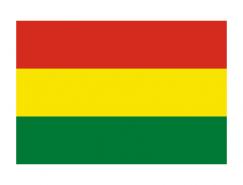 玻利維亞國旗矢量圖