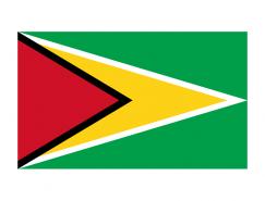 圭亚那国旗矢量图