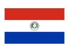 巴拉圭国旗矢量图