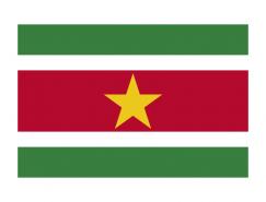 苏里南国旗矢量图