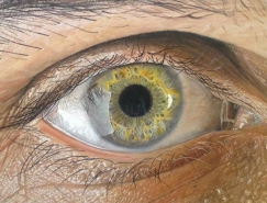 Redosking超逼真的眼睛彩色铅笔绘画作品