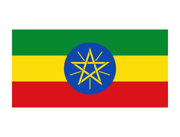 埃塞俄比亚电子签证