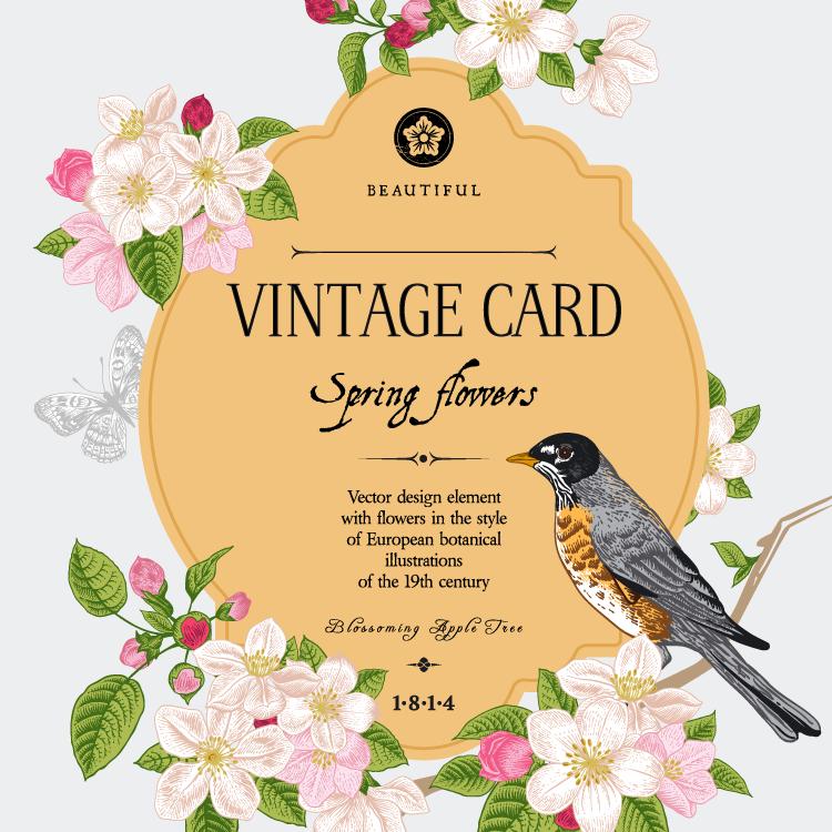小鸟和复古花卉卡片设计矢量素材 - 设计之家