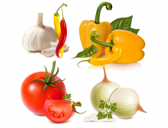 各种蔬菜矢量素材