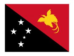 巴布亚新几内亚国旗矢量图