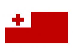 汤加国旗矢量图