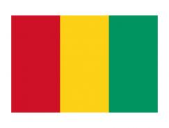 几内亚国旗矢量图