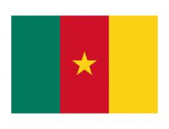 喀麥隆國旗矢量圖