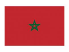 摩洛哥国旗矢量图