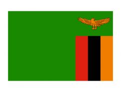 赞比亚国旗矢量图