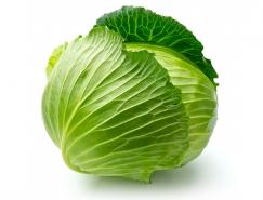 卷心菜高清图片