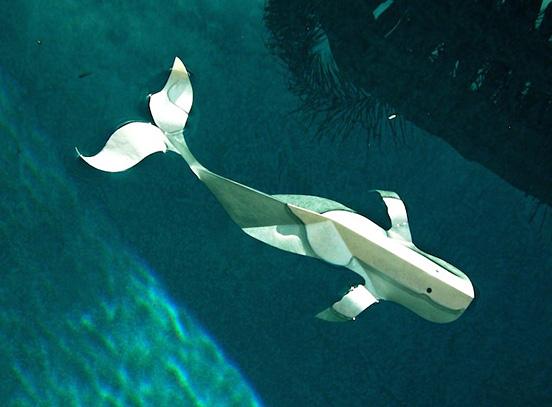 fan飞扬的立体纸雕天鹅(2)