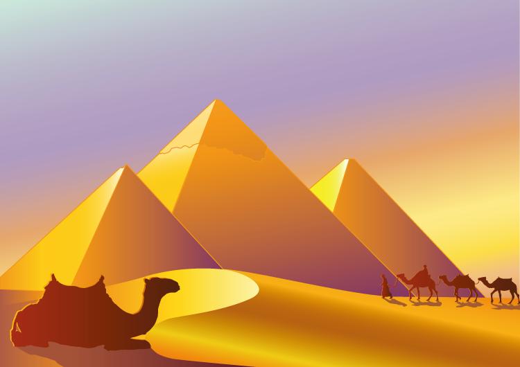骆驼和金字塔矢量素材