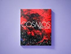 精致的书籍封面装帧设计欣赏