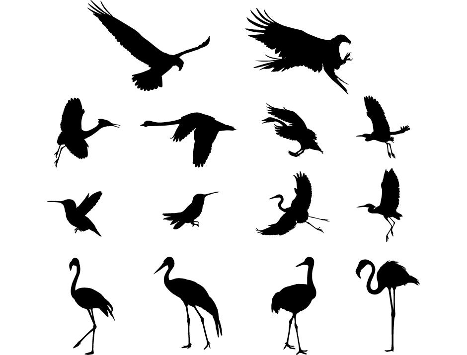鸟类剪影矢量素材(2) - 设计之家