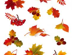 秋天的紅葉矢量素材