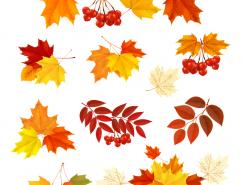 秋天的紅葉矢量素材(2)