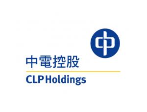 中电控股logo标志矢量图