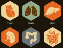 人體器官圖標矢量素材