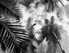 Hengki Koentjoro黑白自然风光摄影