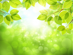 梦幻绿色枝叶背景矢量素材