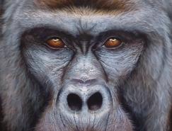 Eyan Higgins Jones逼真的动物肖像