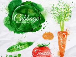 水彩蔬菜矢量素材(3)