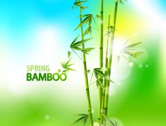 清新的翠竹矢量素材
